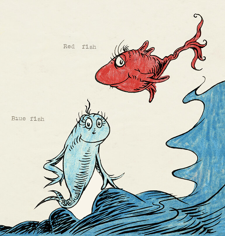 Image result for one fish two fish red fish blue fish