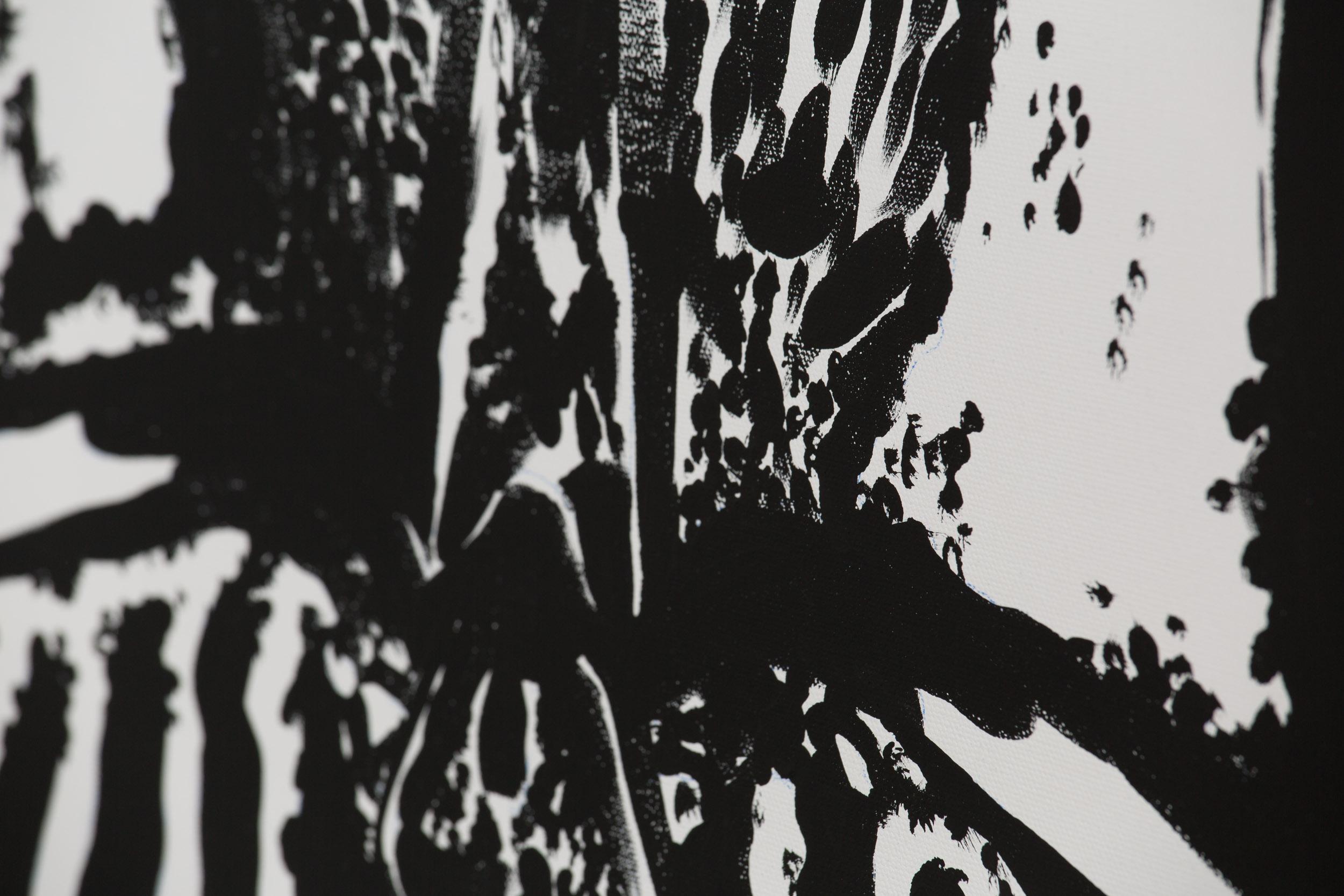 Carapace V [DETAIL]