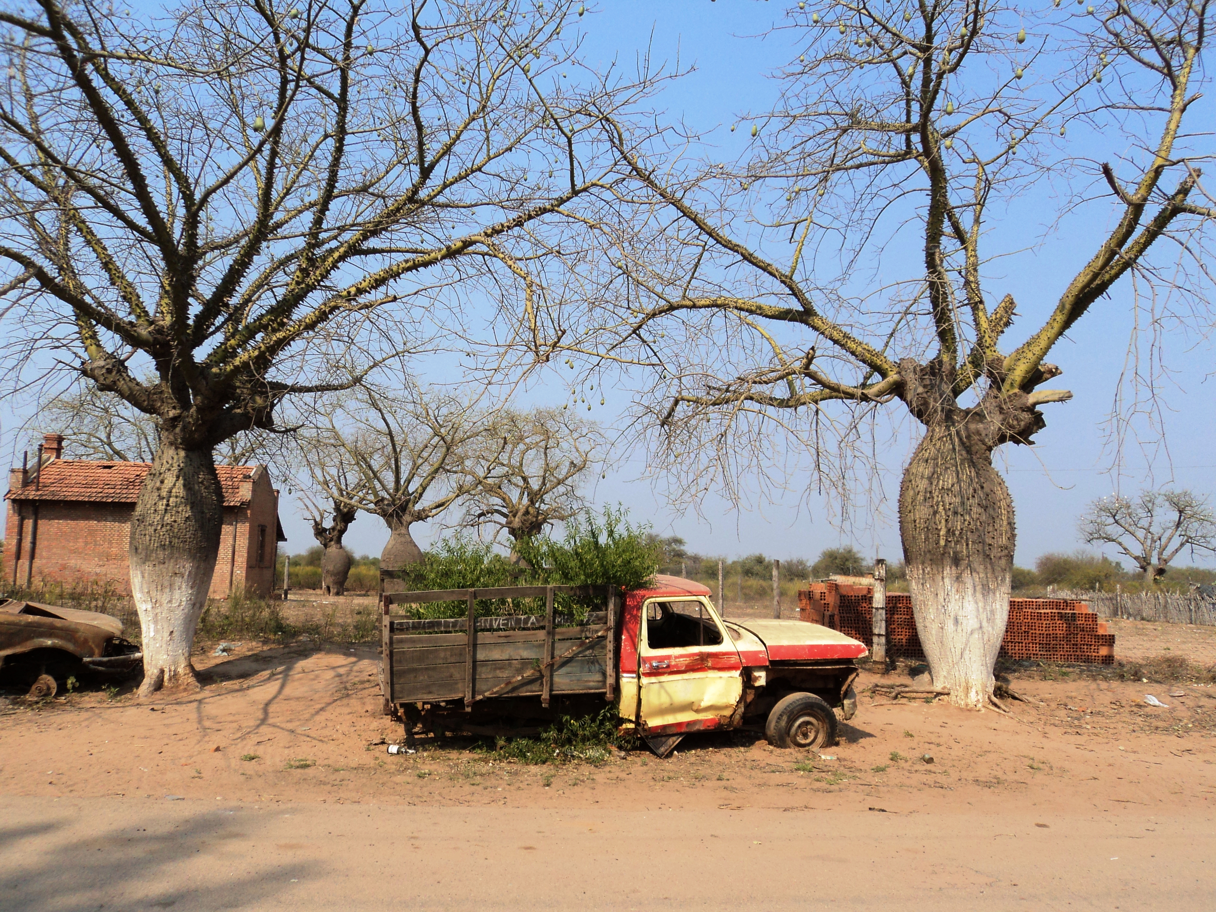 An abandoned truck in the lowland chaco village of Dragones.