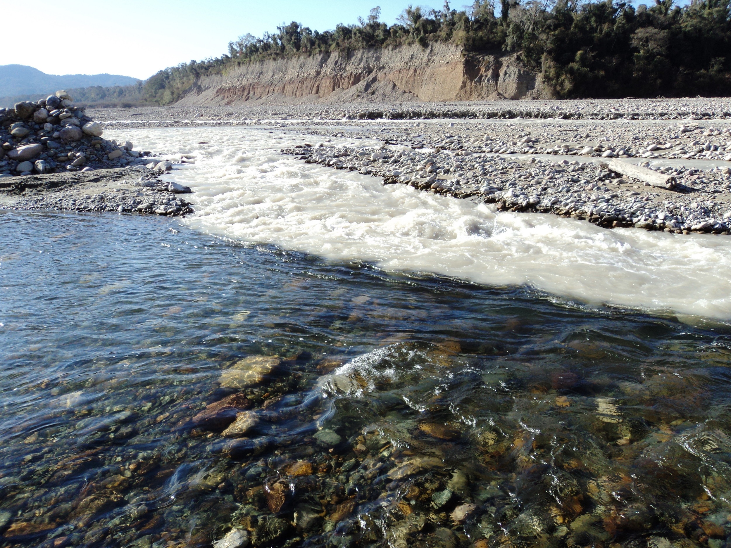 Silt-laden water comes together with clear water near the town of Isla de Cañas, Argentina (600 m elevation).