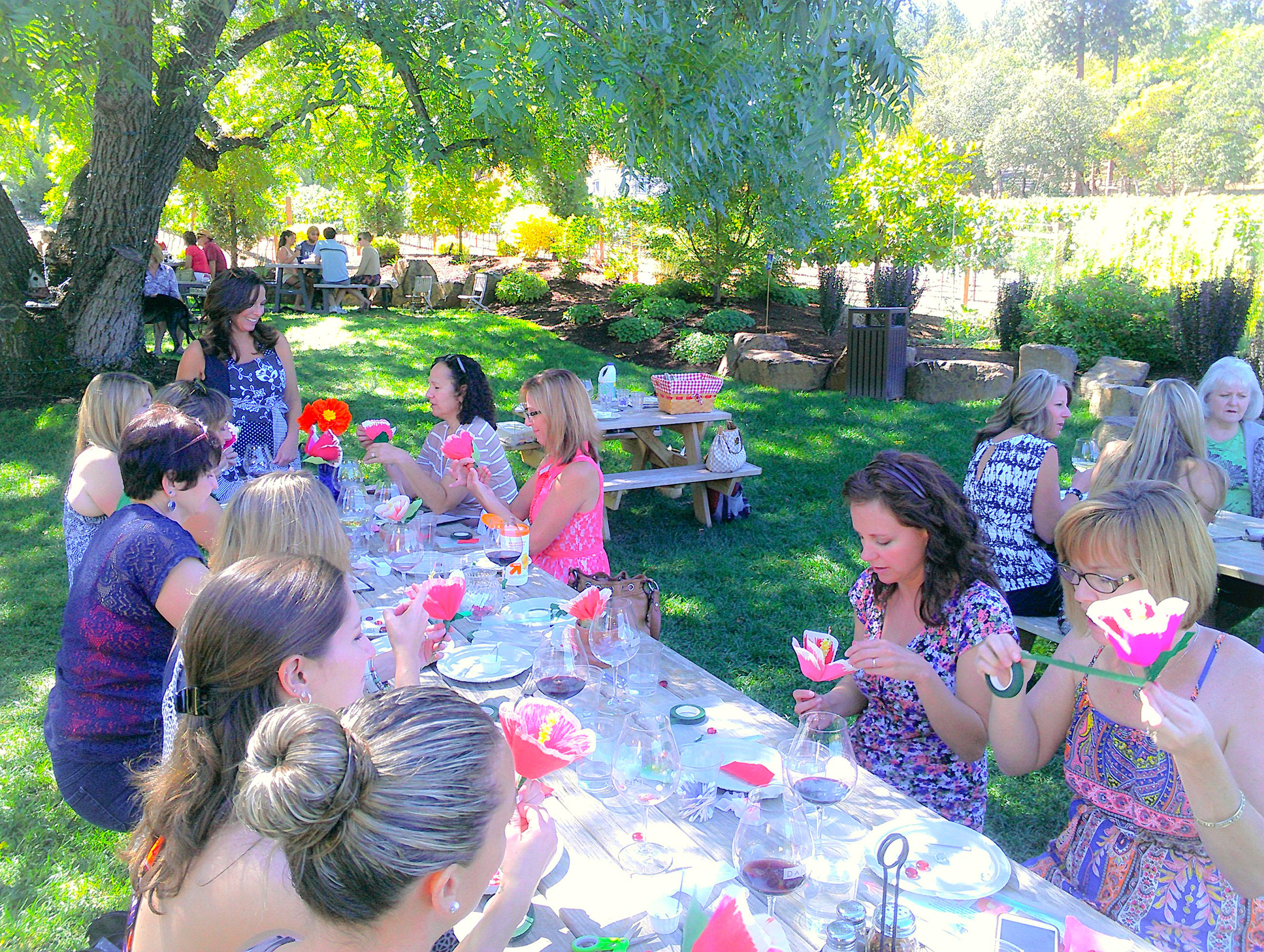 Class under the tree at DANCIN Vineyards.