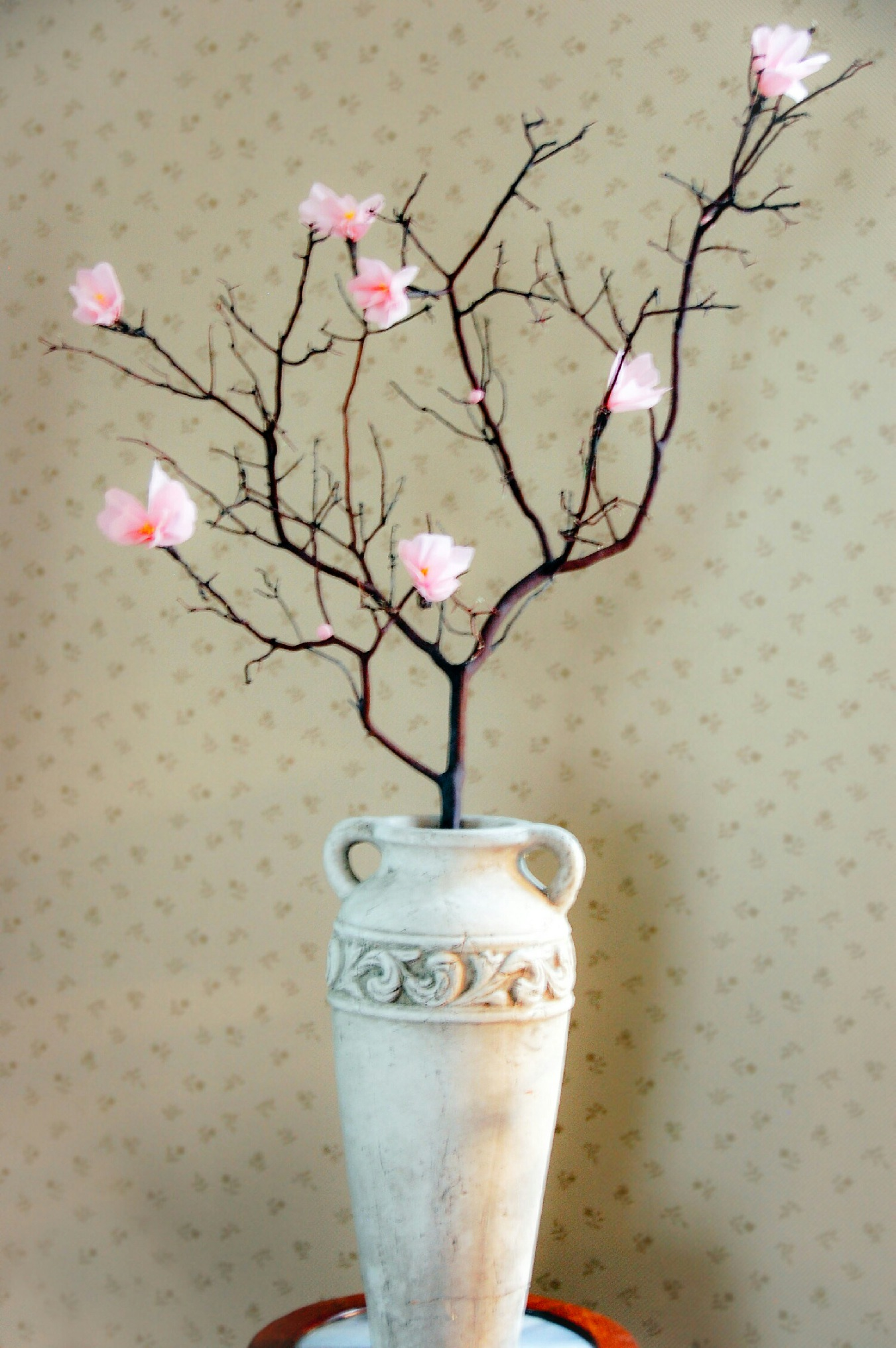 Here is an 24 inch Cherry Blossom Branch displayed in an 20 inch antique vase.