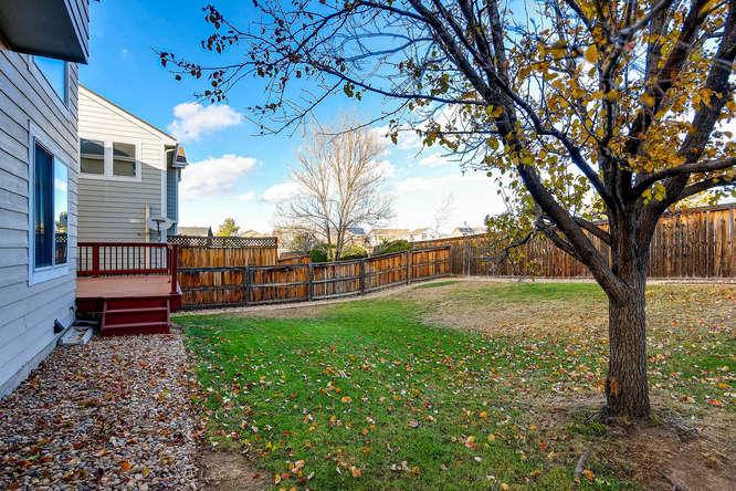10094 Astorbrook Lane-small-026-28-Back Yard-666x445-72dpi.jpg