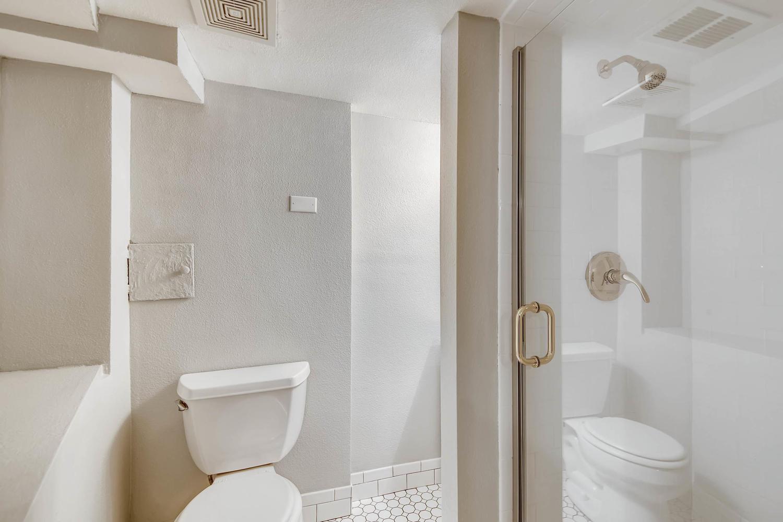 3576 Bruce Randolph Ave Denver-large-021-15-Lower Level Bathroom-1500x1000-72dpi.jpg