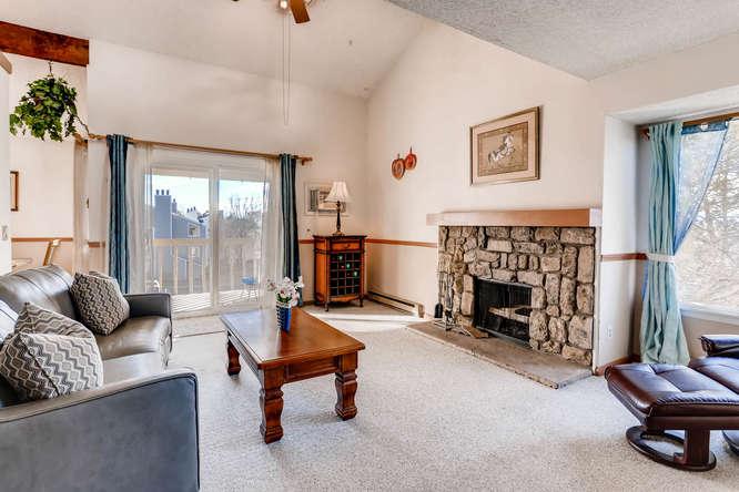 4062 S Atchison Unit 304-small-002-19-Living Room-666x444-72dpi.jpg