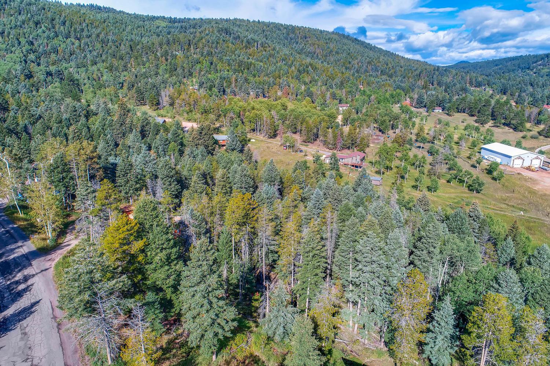 19333 Silver Ranch Rd Conifer-large-003-4-Views-1500x1000-72dpi.jpg
