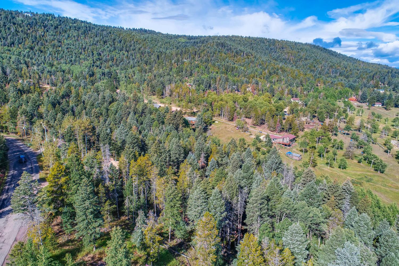 19333 Silver Ranch Rd Conifer-large-004-6-Views-1500x1000-72dpi.jpg