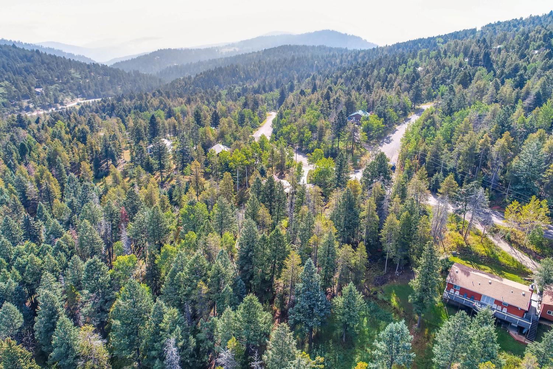 19333 Silver Ranch Rd Conifer-large-007-1-Views-1500x1000-72dpi.jpg
