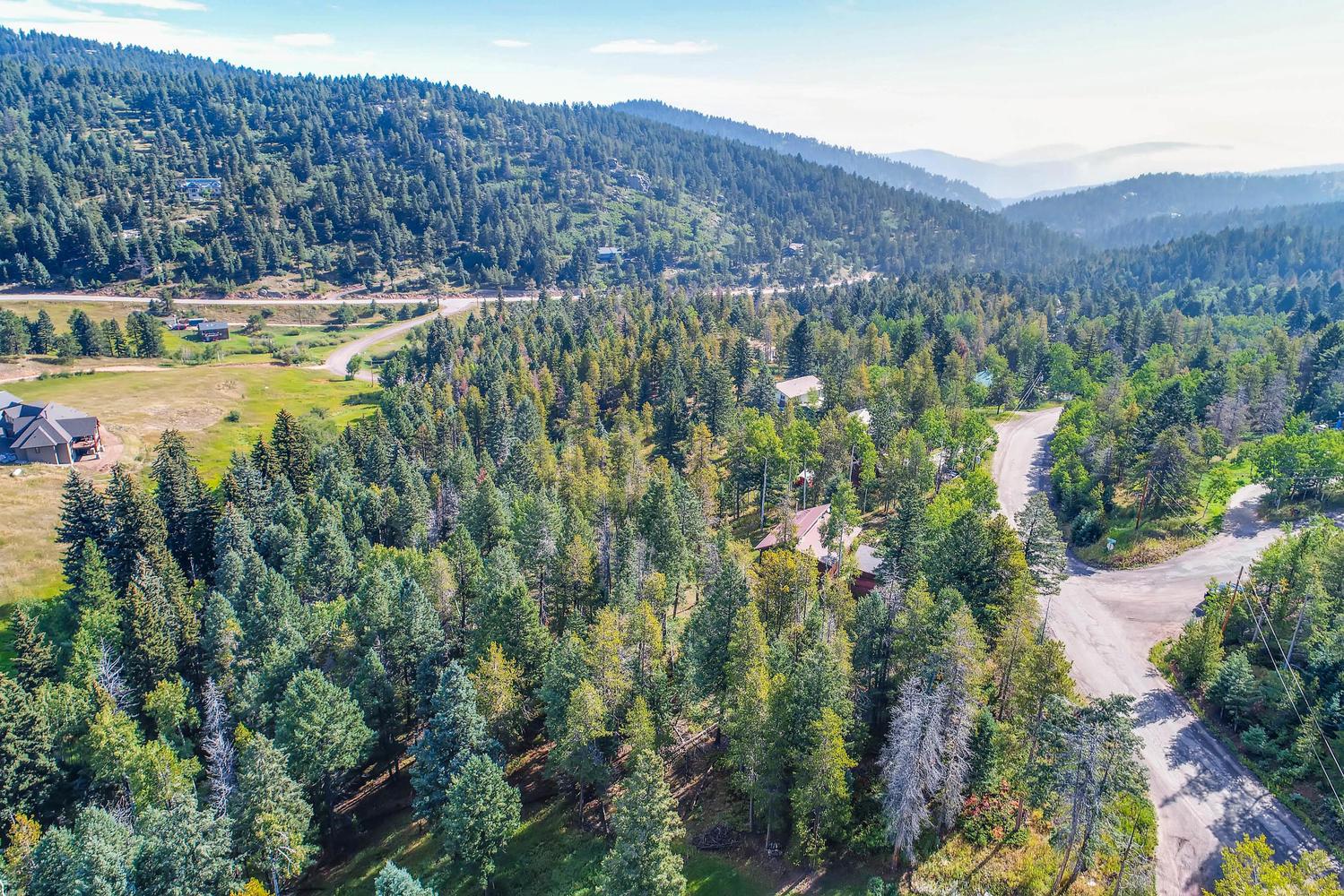 19333 Silver Ranch Rd Conifer-large-008-7-Views-1500x1000-72dpi.jpg