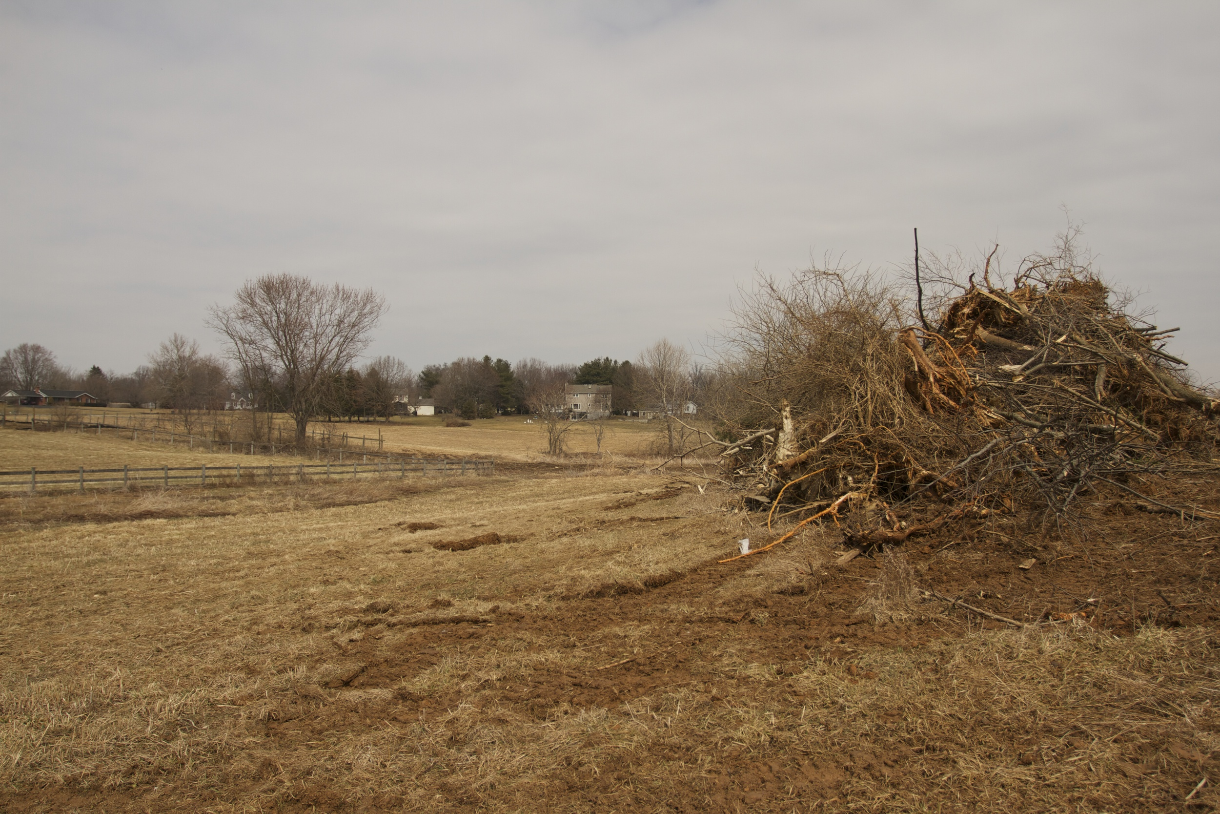 Bulldozed junk trees waiting for a burn next winter! Our view has changed drastically since September!!!