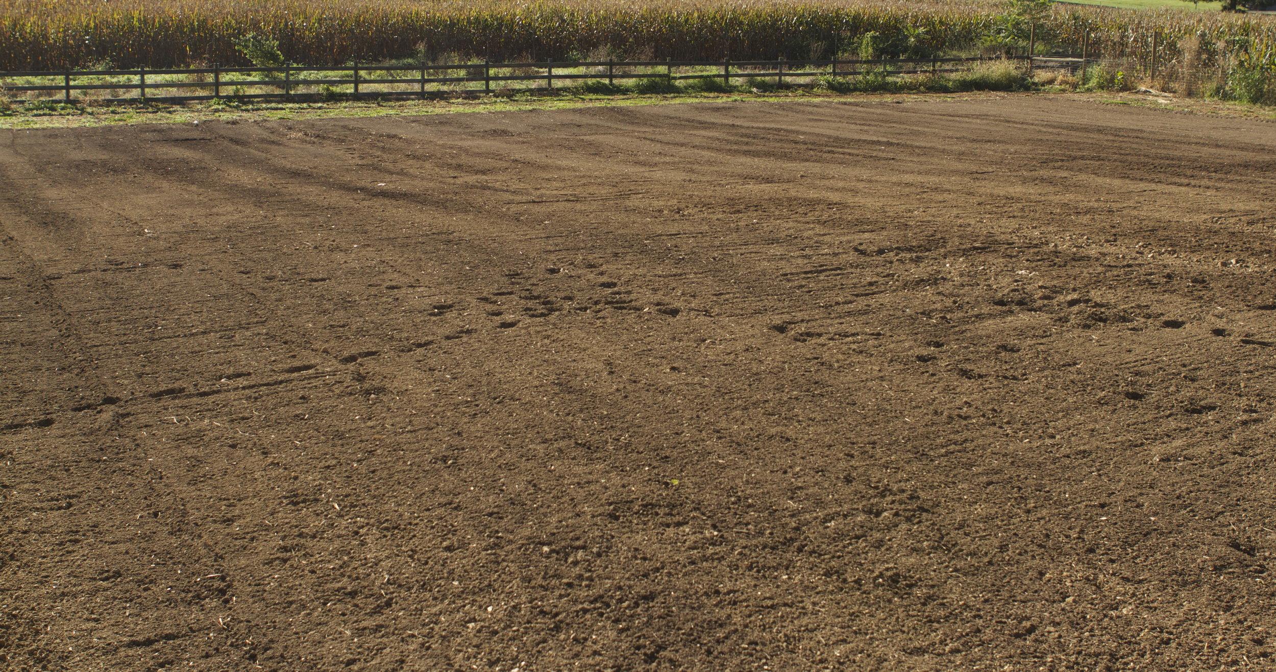 new field...post-field prep