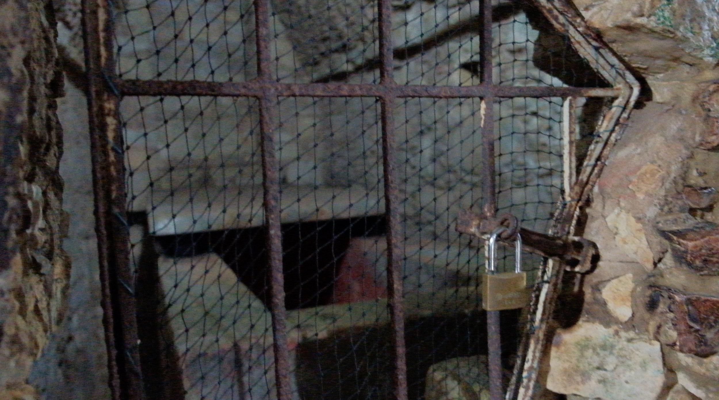 Palenque crypt.jpg