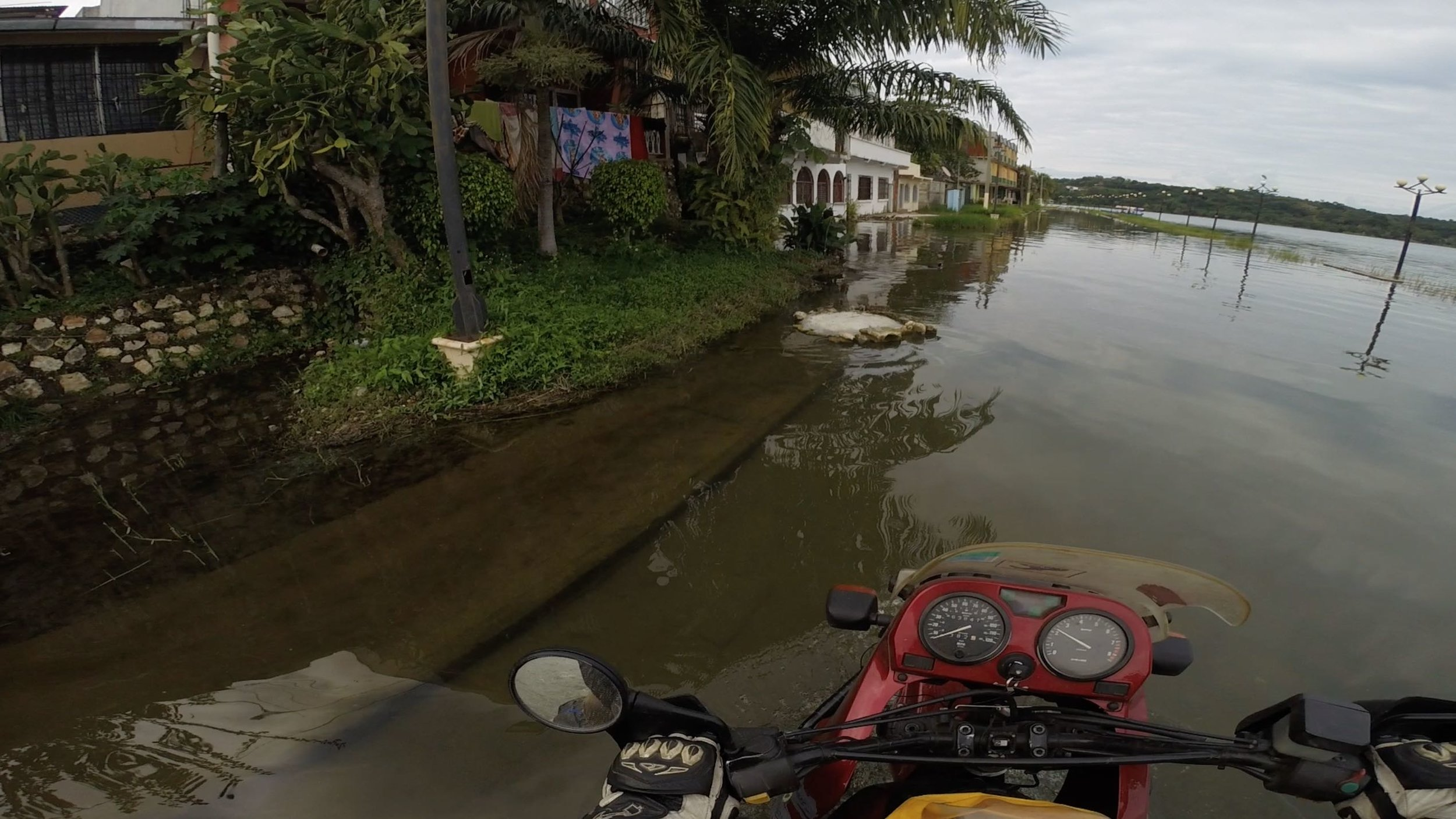 Tikal flood.jpg