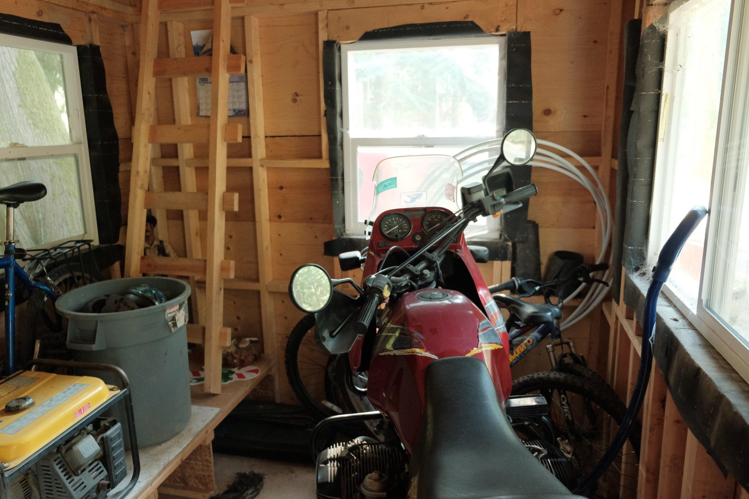 The Muskox in storage