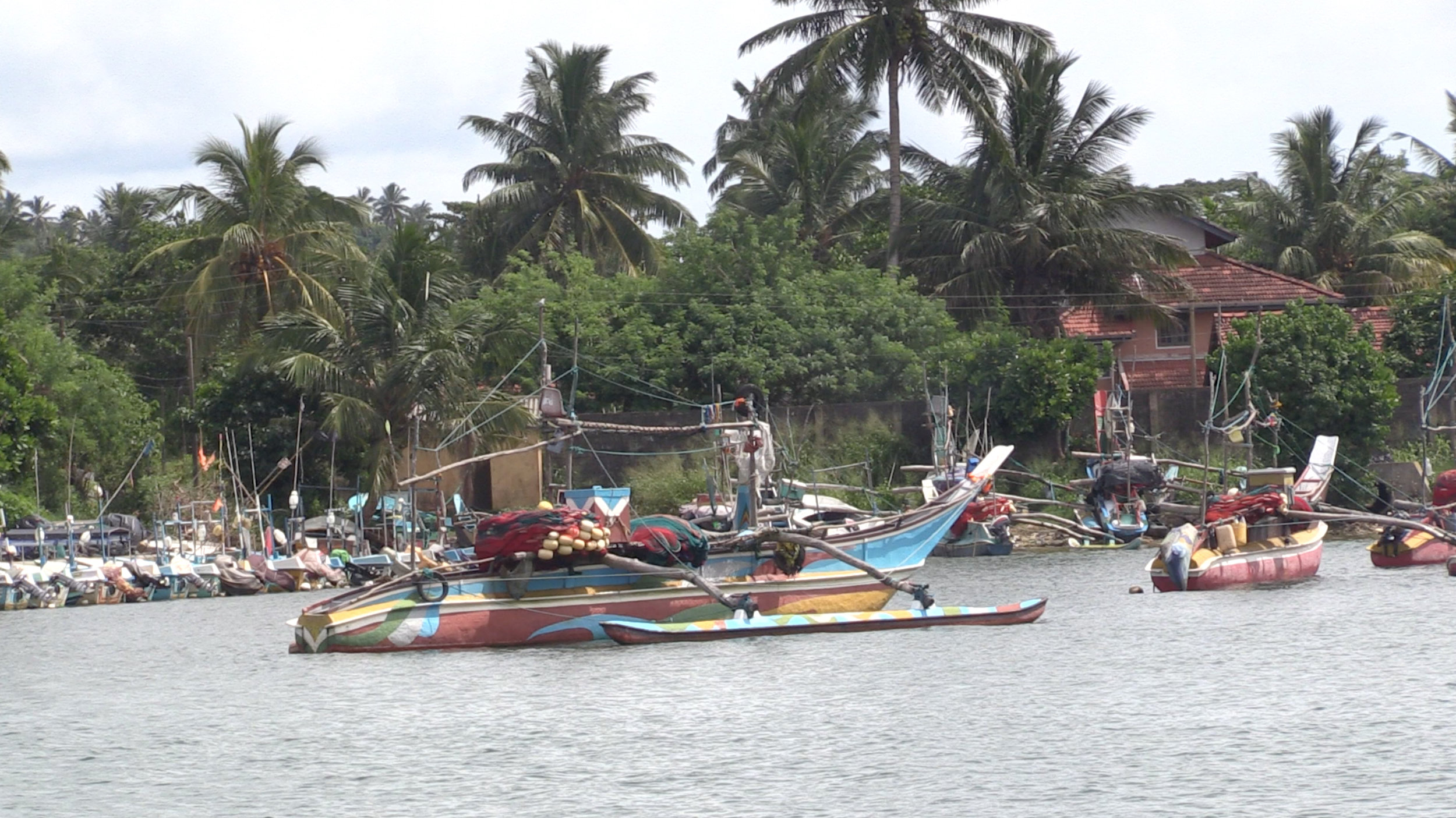 Fishing boats in the local harbour