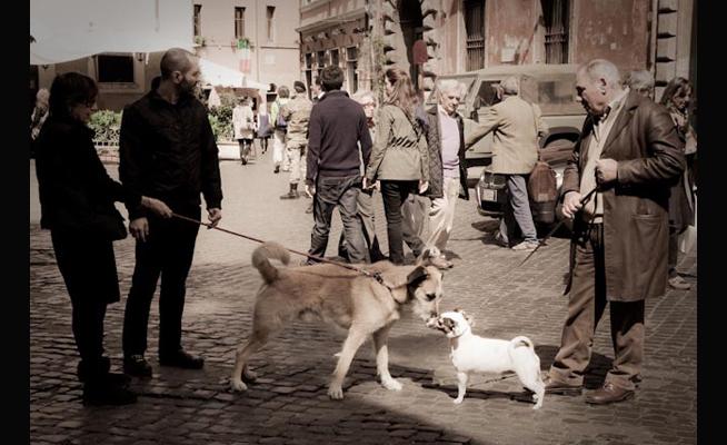 Rome_9702.jpg