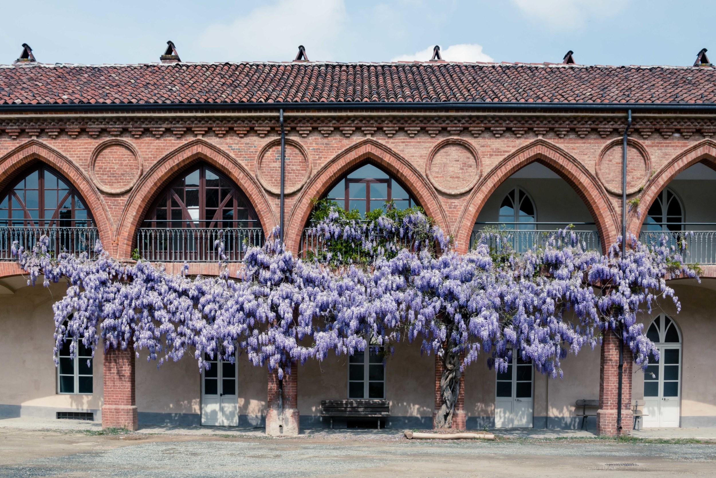 La Mandria in Primavera Fotografo Torino