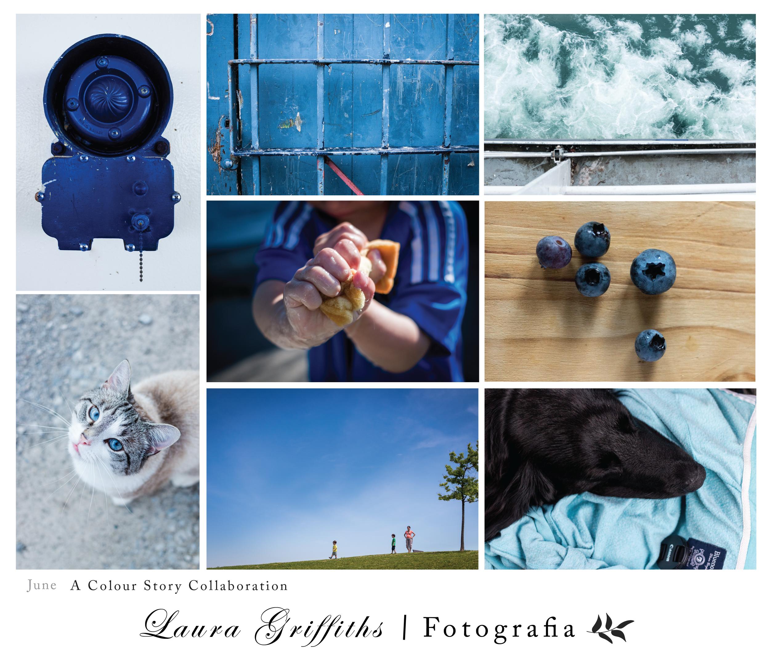 A Color Story Collaboration Laura Griffiths Fotografia Blue blu June