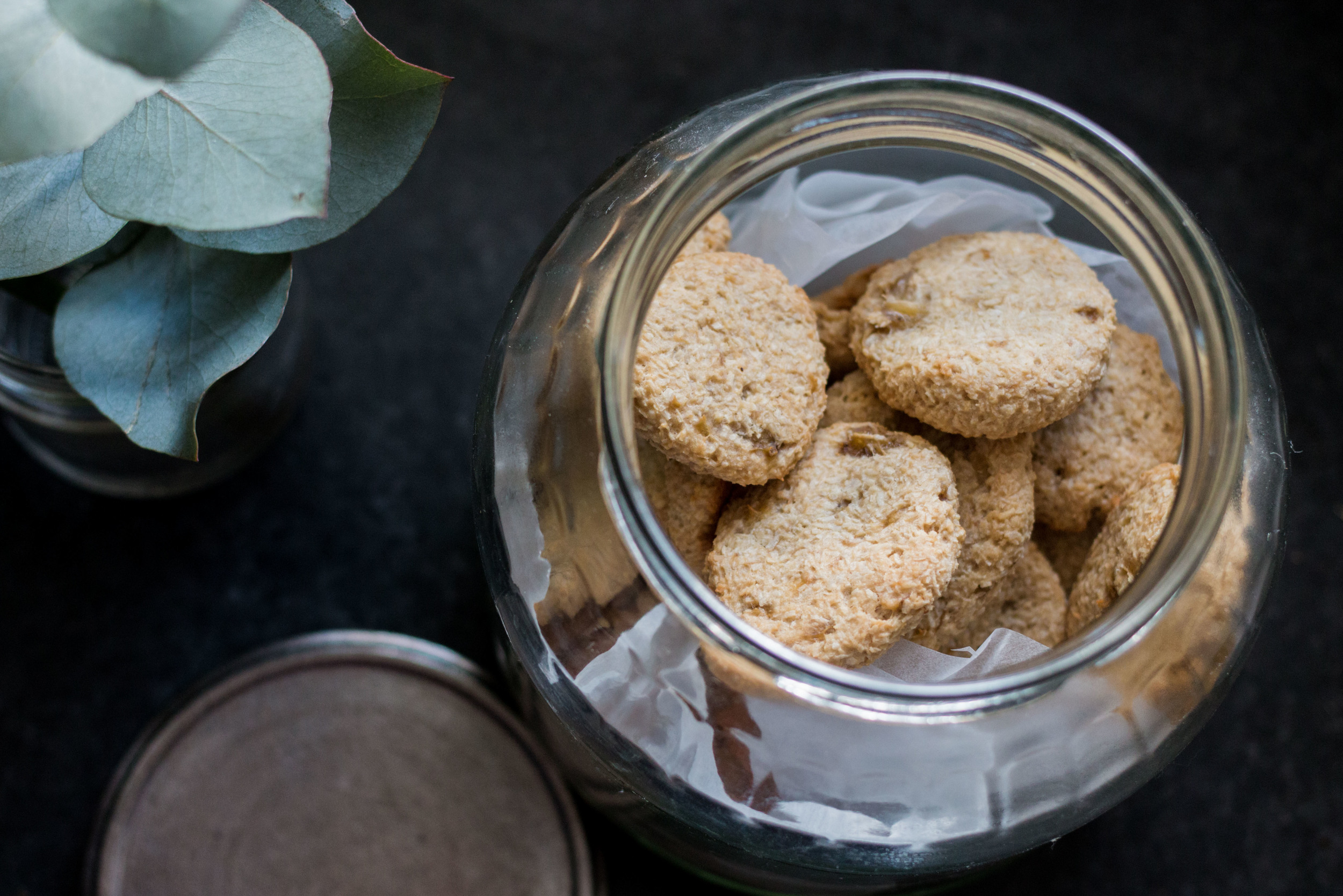 Biscotti per cani fatti in casa Homemade Dog biscuits