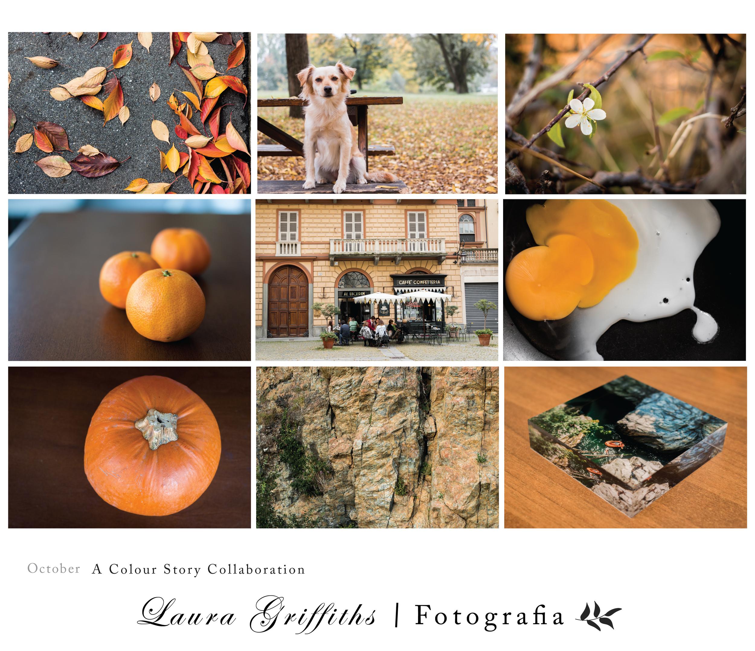 Orange color story collaboration fall fotografia torino