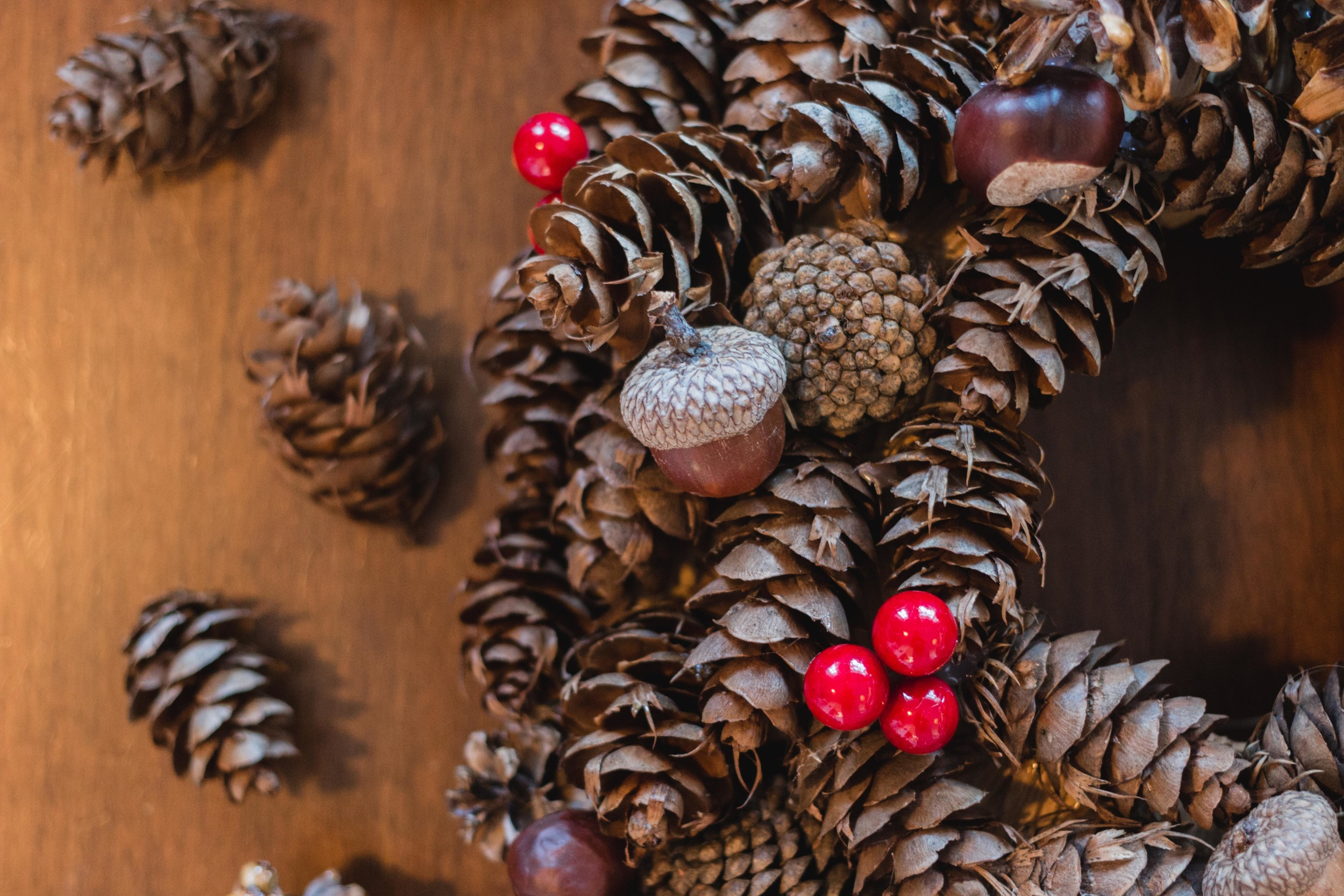 Pinecone Holiday DIY Easy Homemade Ornaments per natale wreath