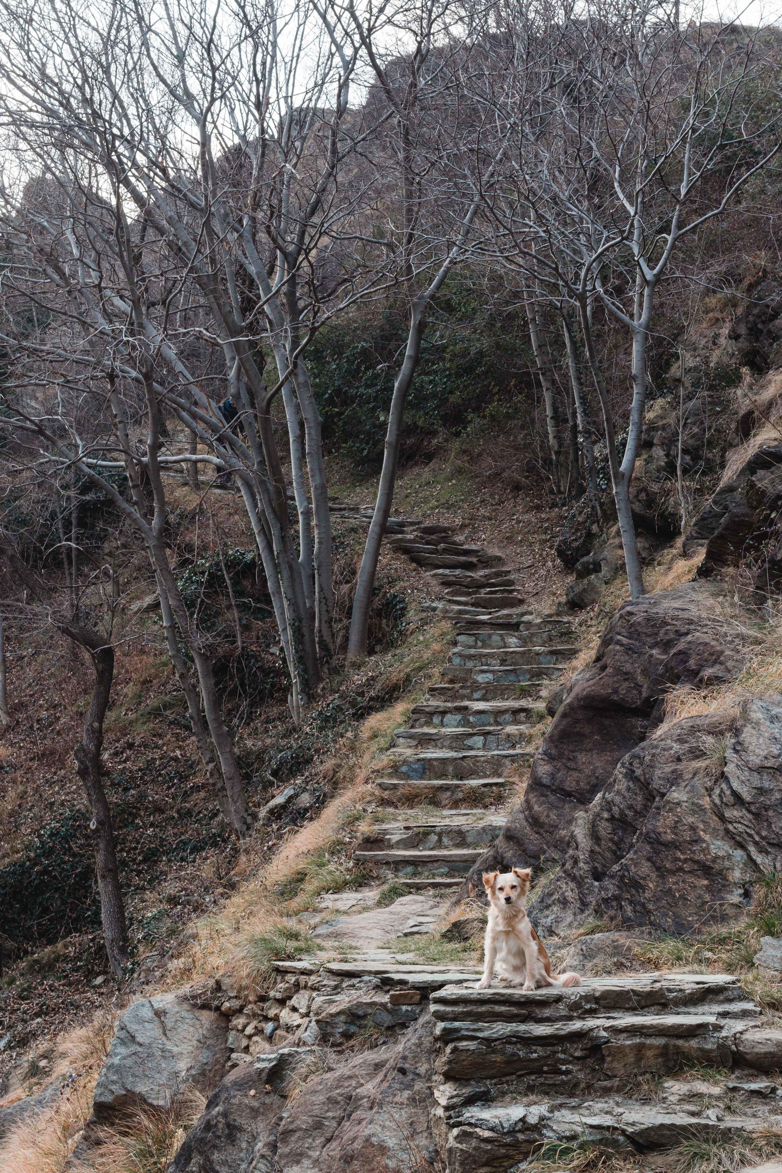 path per arrivare al ponte del diavolo