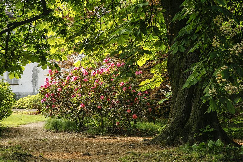 MAGGIO2_ 2009 112_mail.jpg