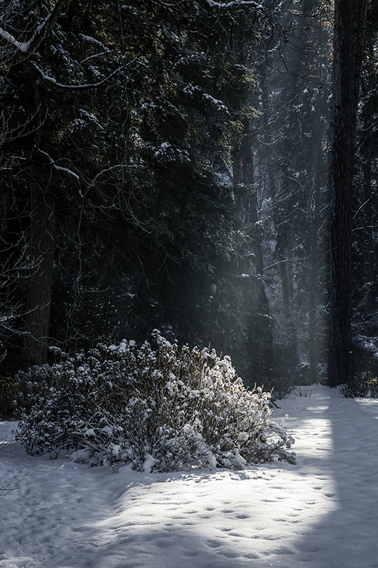 inverno 061_psMail.jpg