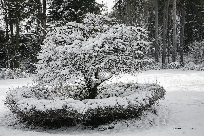 inverno 001_psMail.jpg