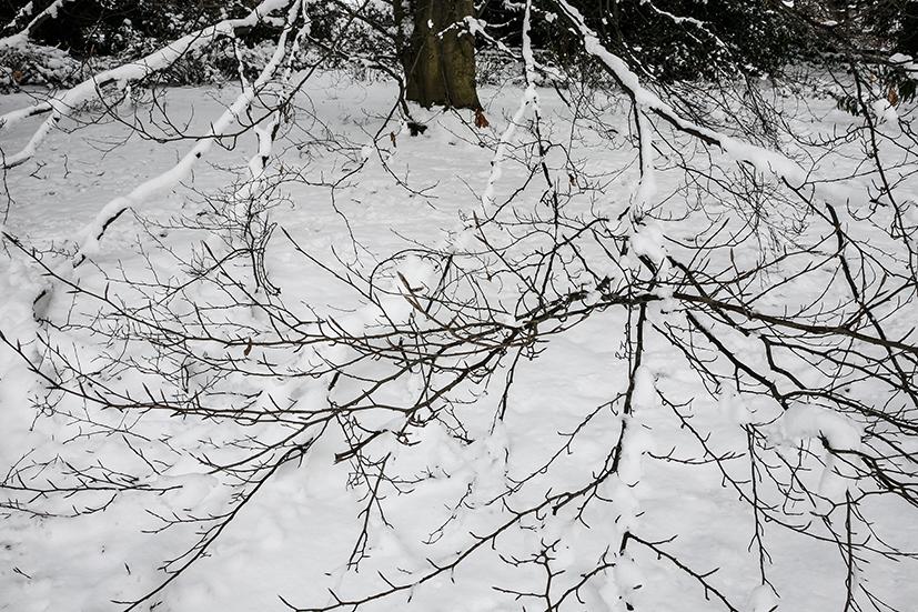 inverno 230_psMail.jpg