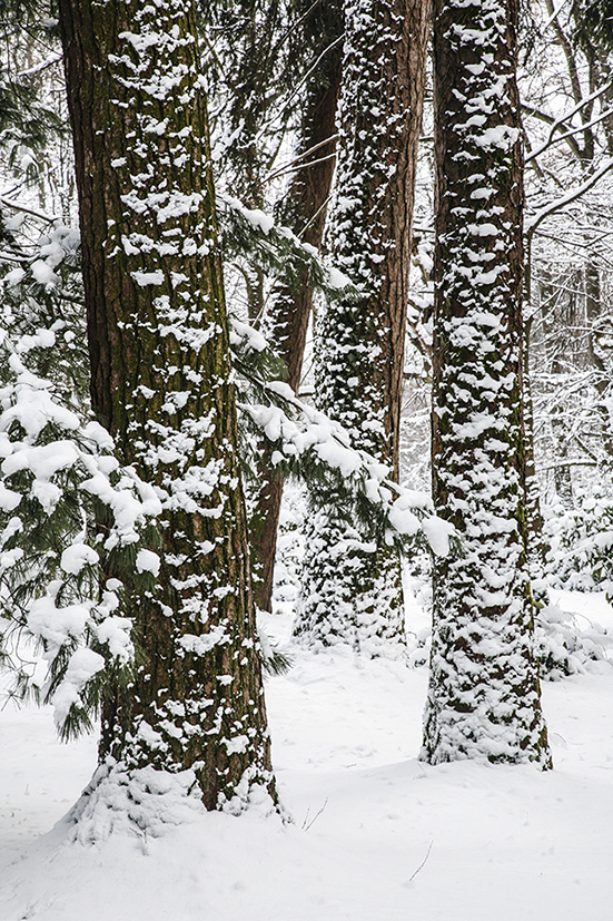 2_inverno 138_psMail.jpg