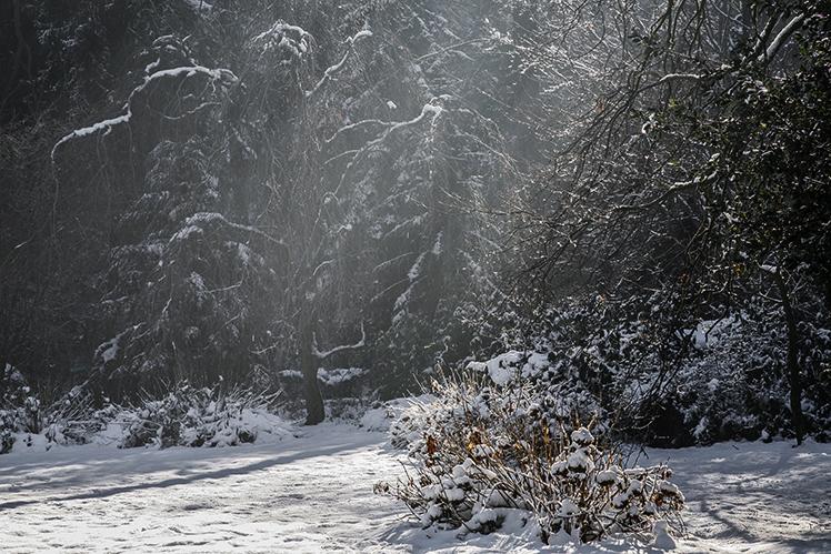 6_inverno 045_psMail2.jpg