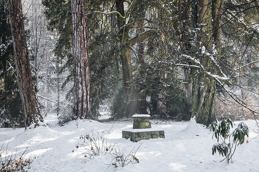 5_inverno 126_psMail.jpg
