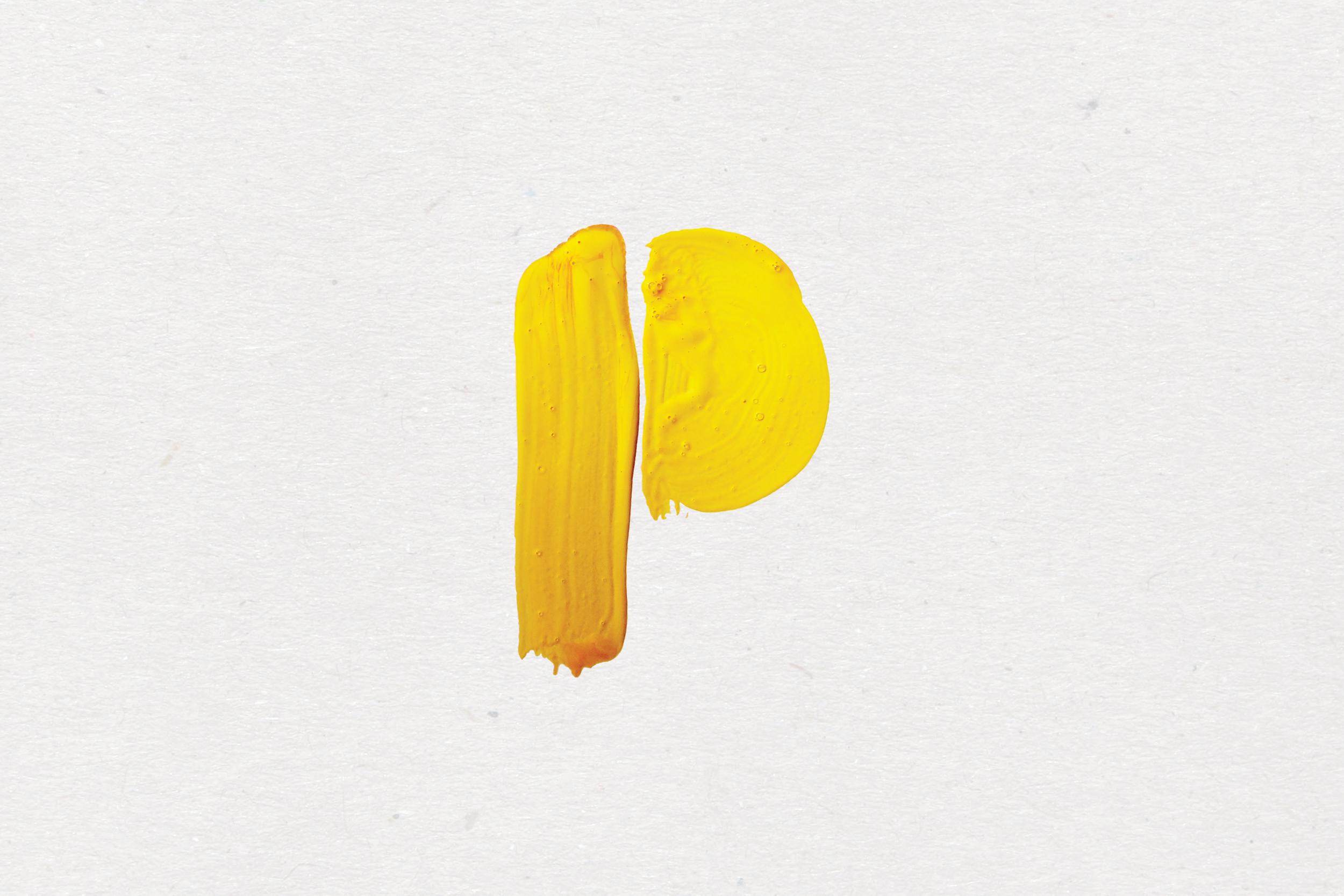 Pintura   Brand Identity / Photography