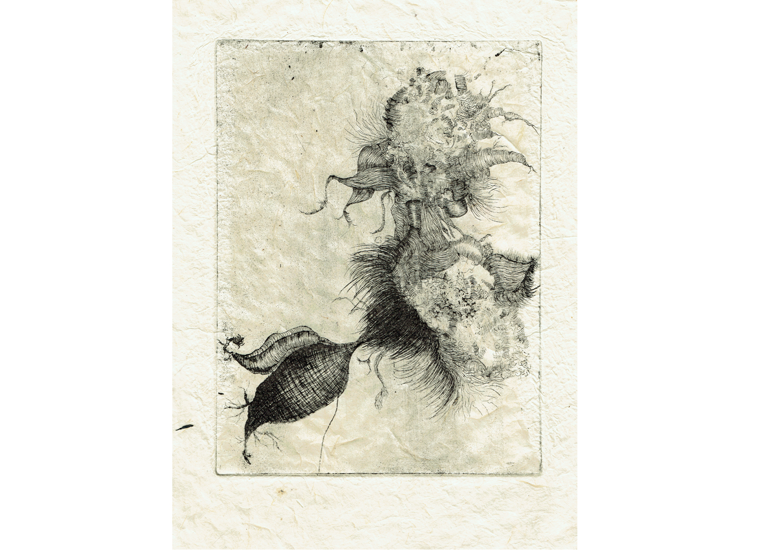 Motif végétal, eau-forte, 15cm x 21cm