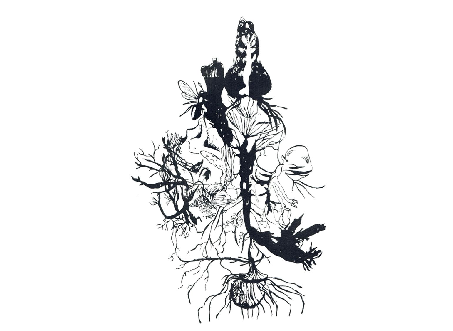 A l'ère de l'hybridation n°1, sérigraphie, 60cm x 40cm