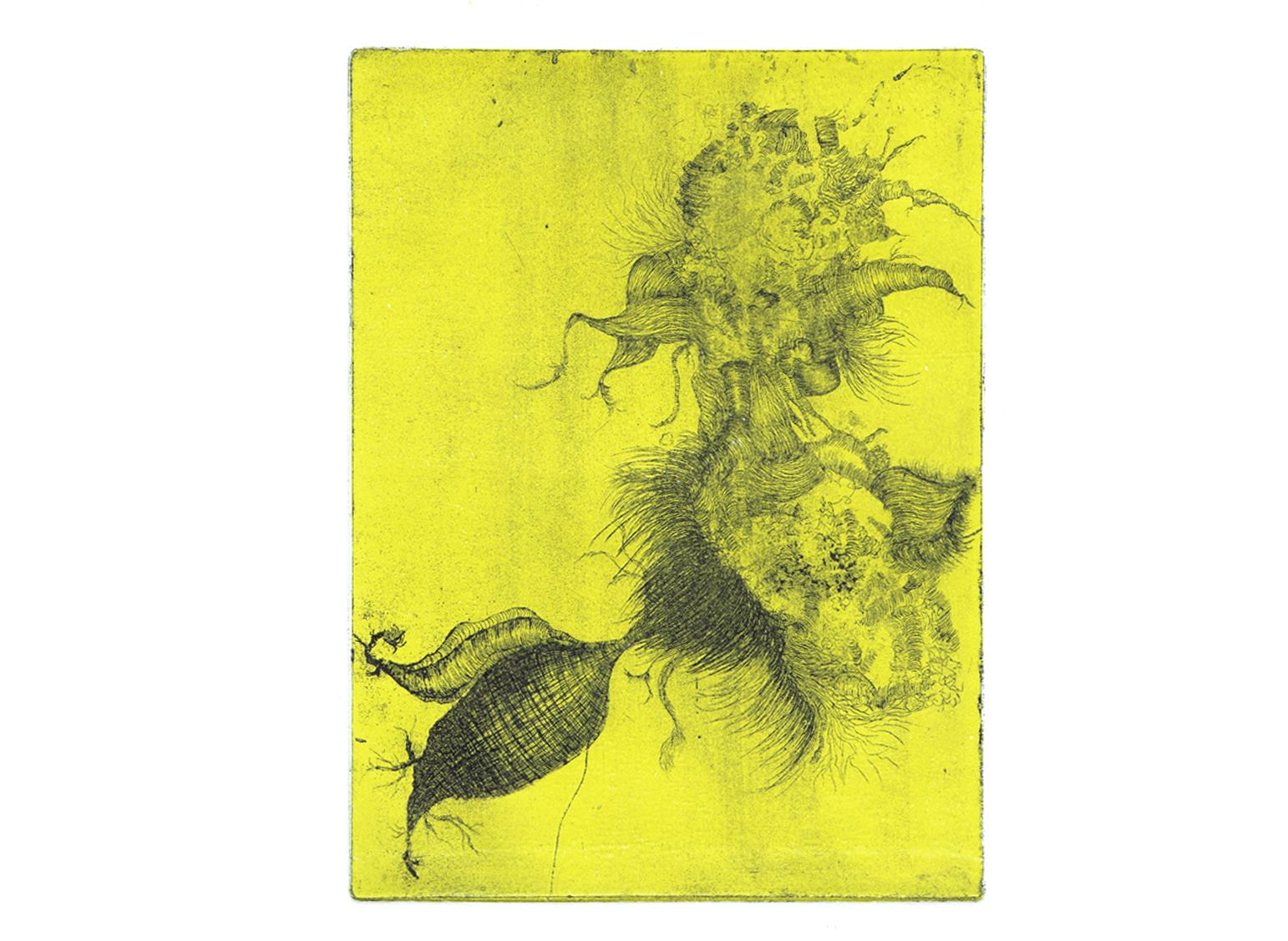 Motif végétal, eau-forte avec roulage, 15cm x 21cm