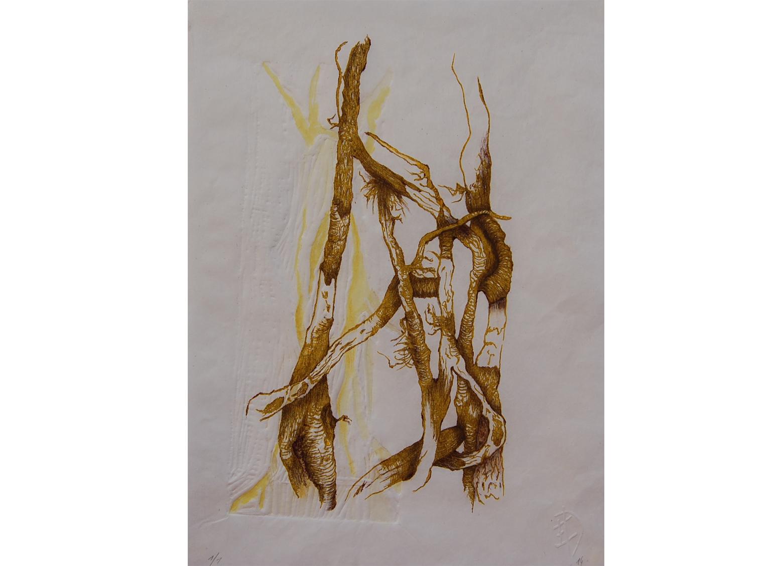 S'enlierrer, lithographie, gaufrage et réhauts à l'aquarelle et graphites, 20 x 30 cm