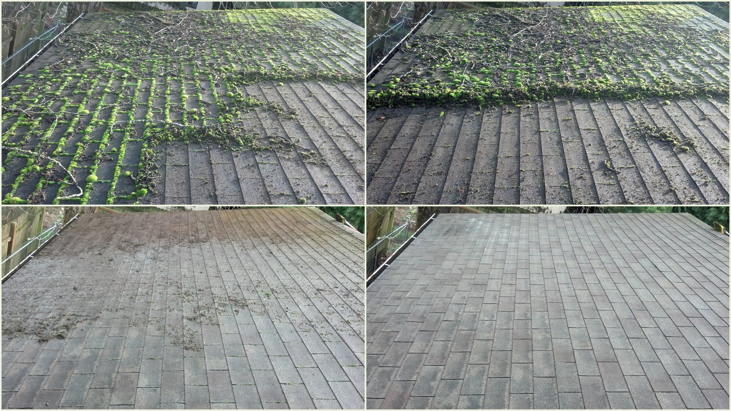 Redmond Roof Moss Removal