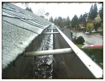 Gutter Cleaning and Gutter Cages