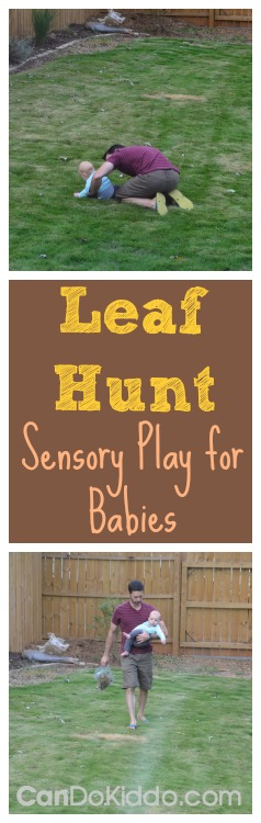 leaf hunt sensory play baby activities
