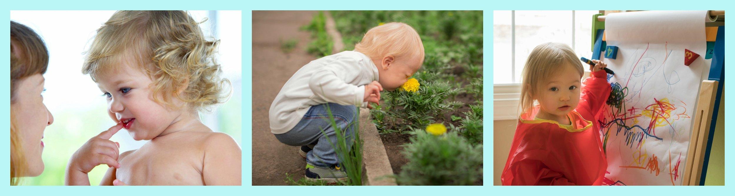 Teach+Your+Toddler+-+Toddler+Development+Course.jpeg