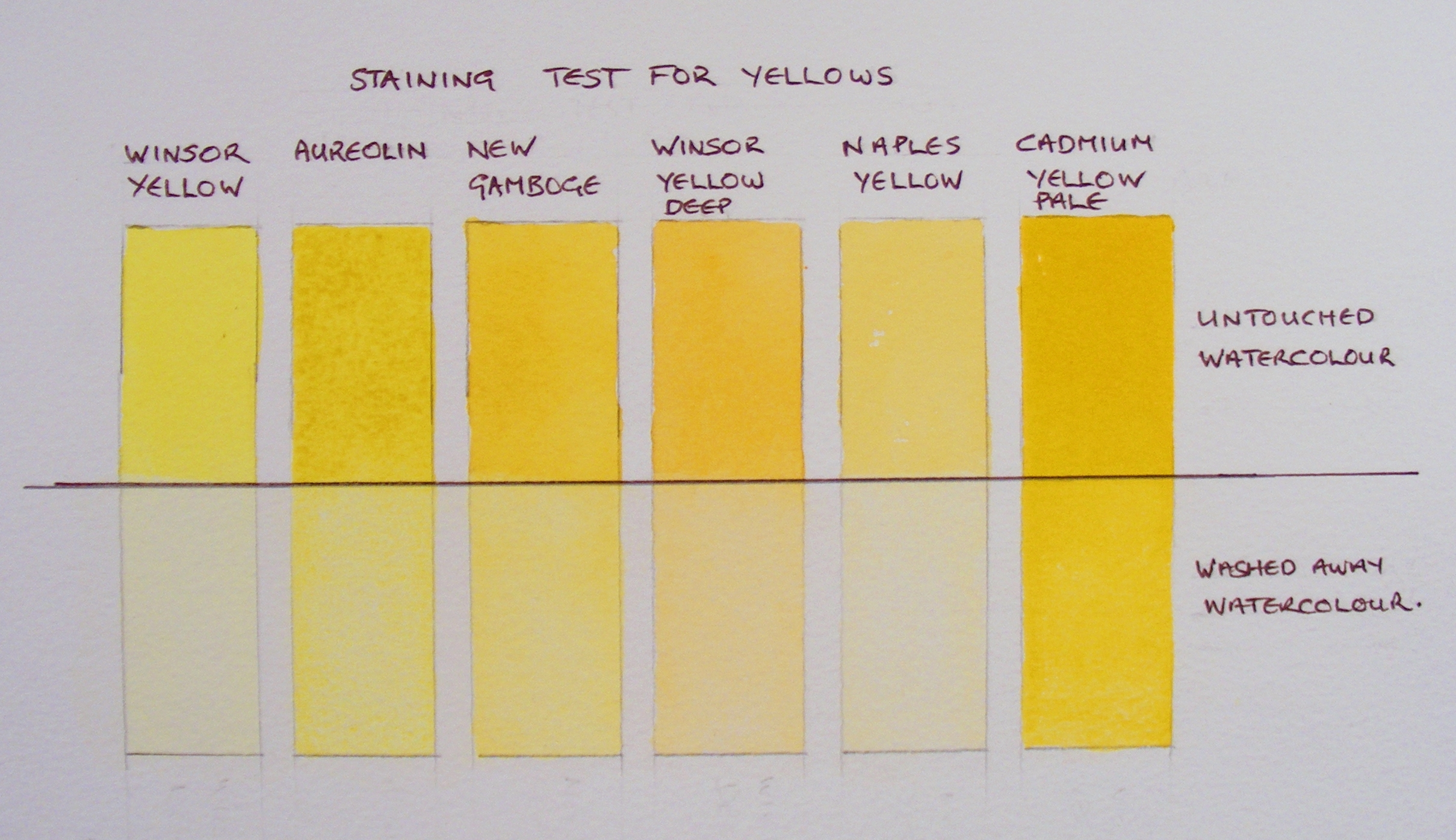 Staining Test for Yellows.JPG