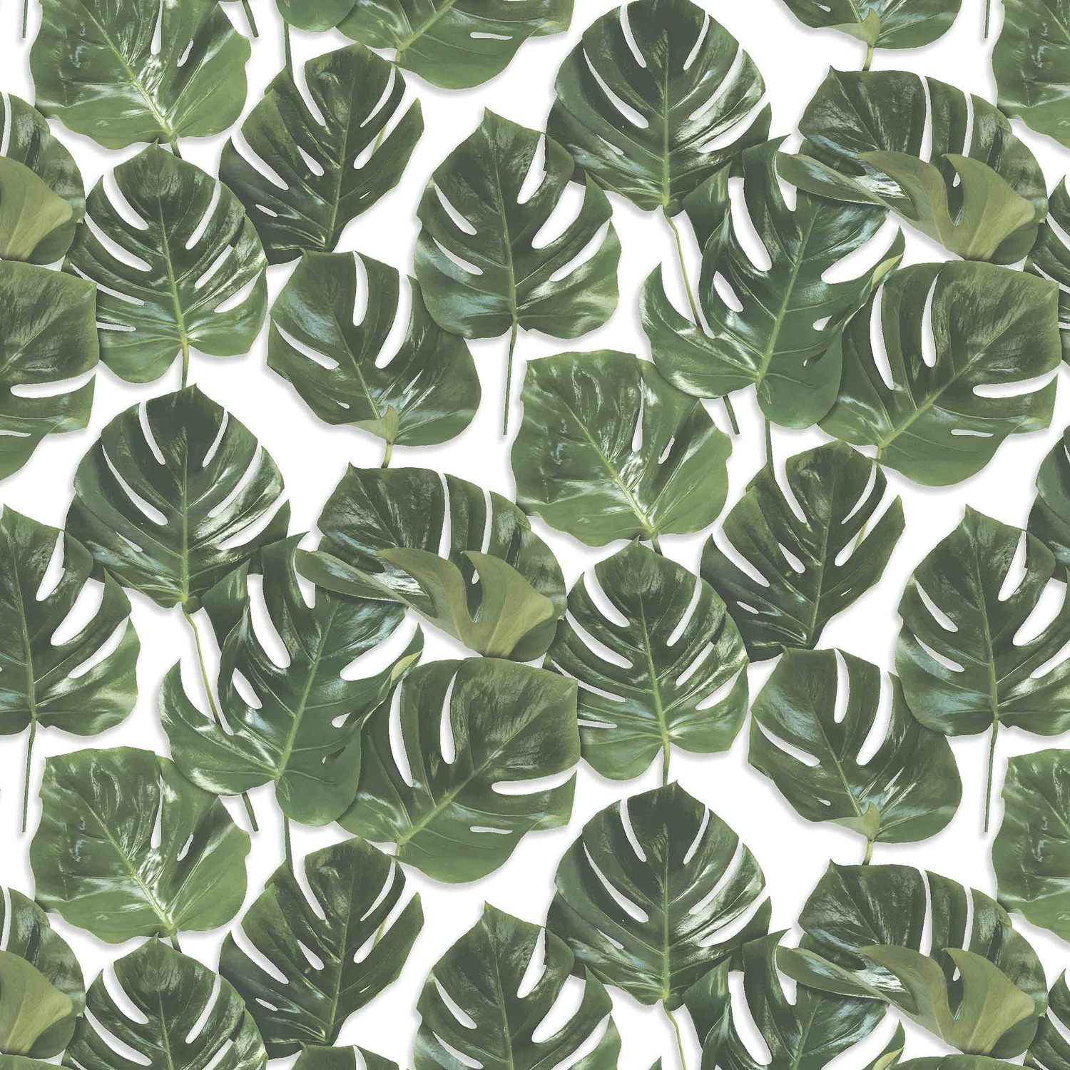 Monstera in Green/White by Woodchip & Magnolia