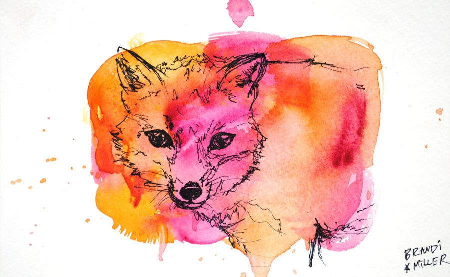 PinkAndOrangeFoxWeb.jpg