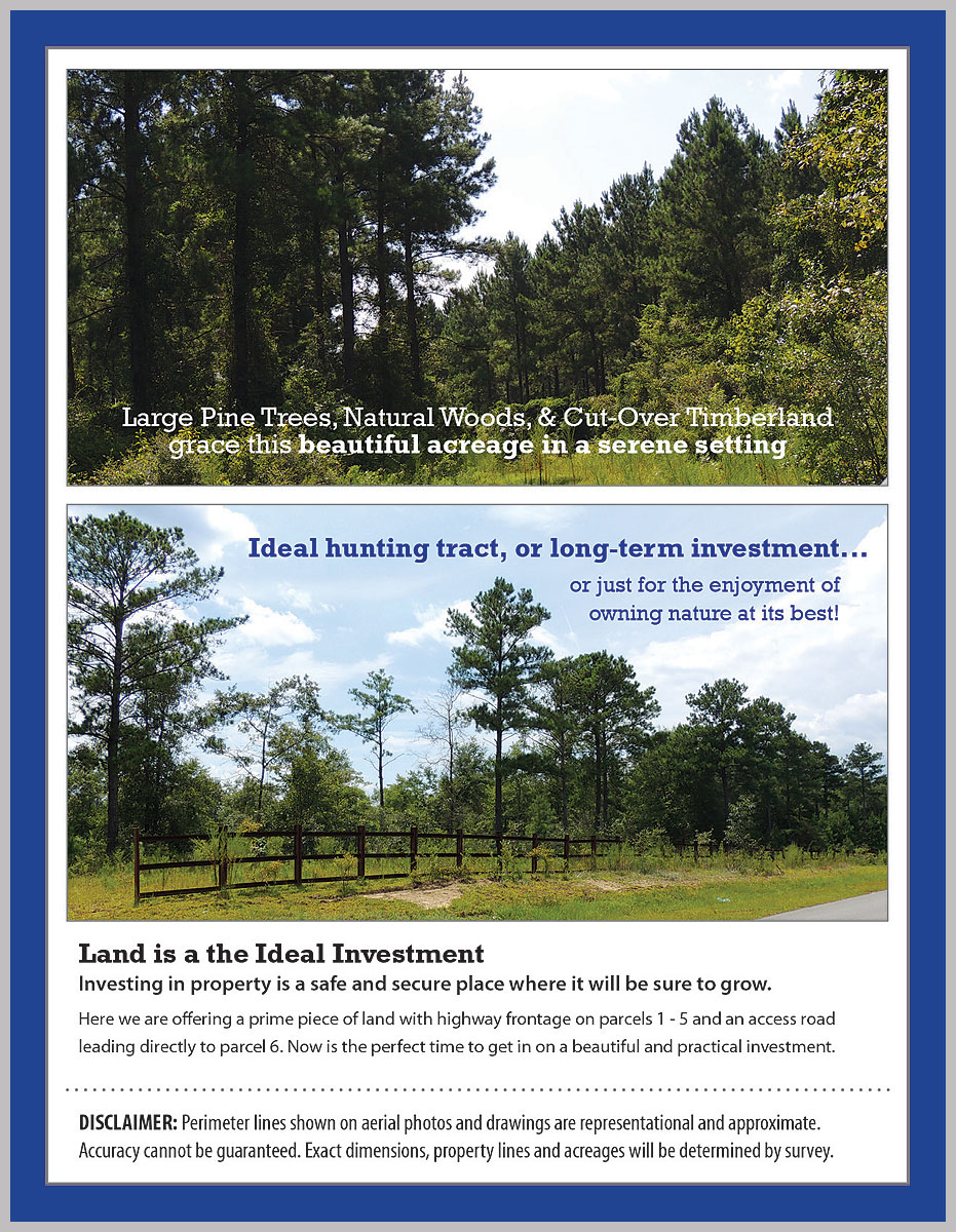 Walton County, FL Auction ground and frontage views