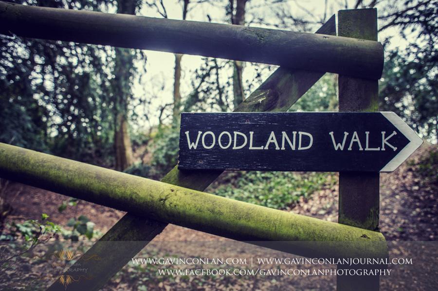 Snowdrop walk at  Hedingham Castle , photography by  gavin conlan photography Ltd