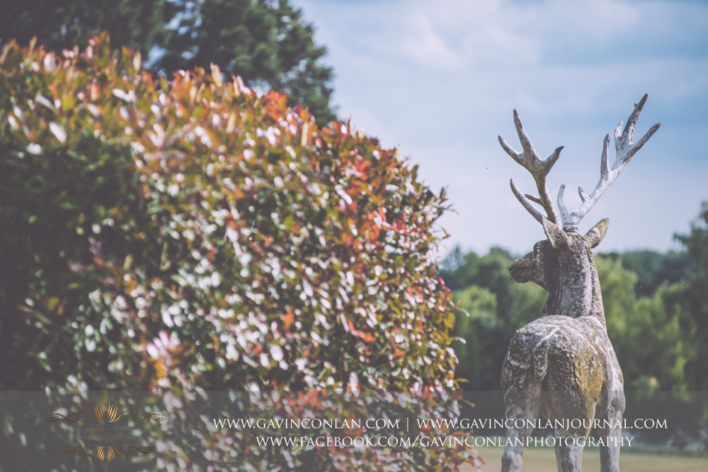 creative detail photograph of the deer state in the grounds of Gosfield Hall.Wedding photography at Gosfield Hall by Essex wedding photographer gavin conlan photography Ltd