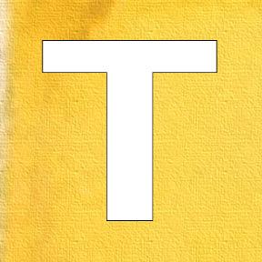 55 t yellow.jpg
