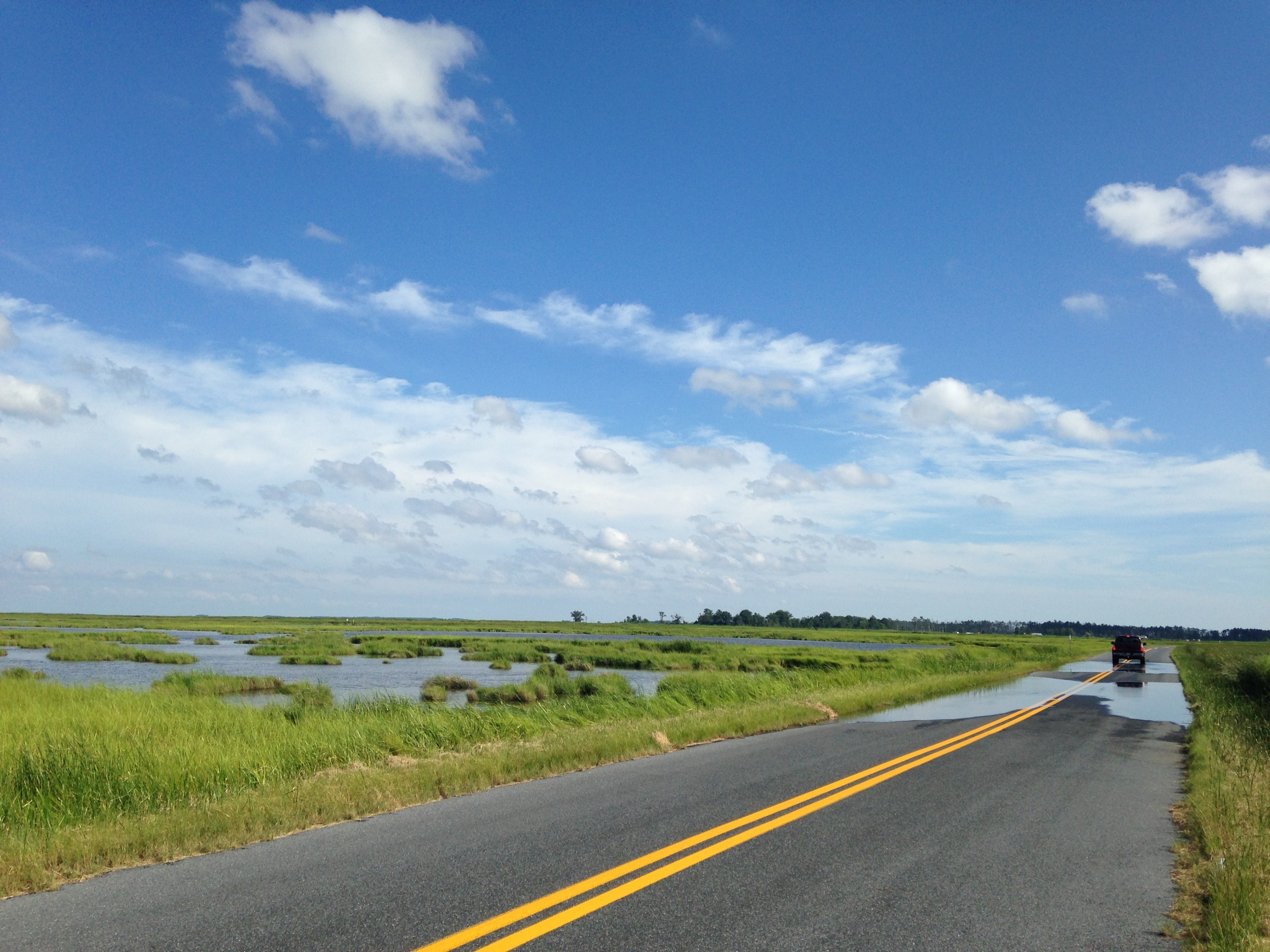 Thanks to rising seas, places like the Blackwater National Wildlife Refuge are quickly losing ground and water frequently covers roads like this one even in calm weather.